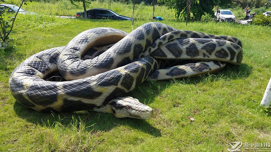 蟒蛇吞恐龙的图片
